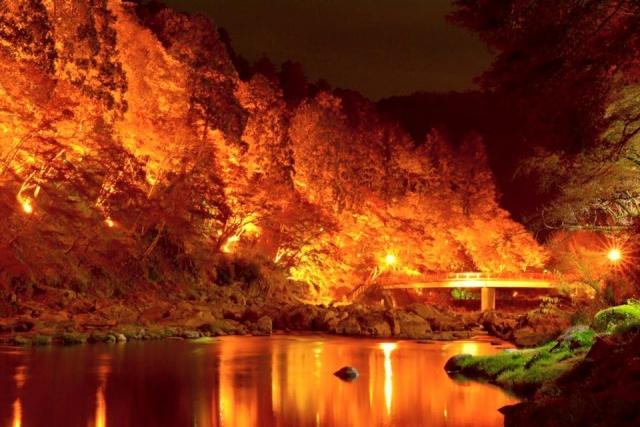 香嵐渓 紅葉 ライトアップ