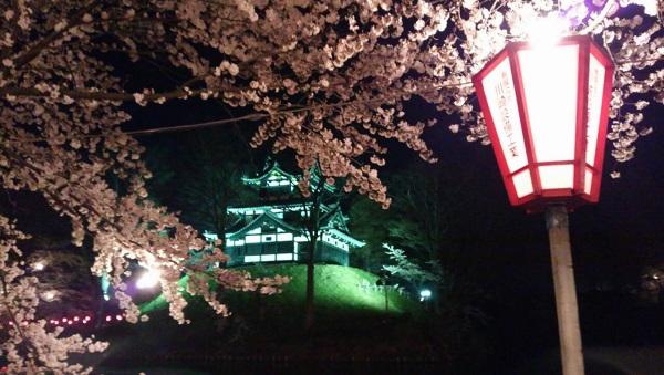 高田公園 桜 ライトアップ 時間