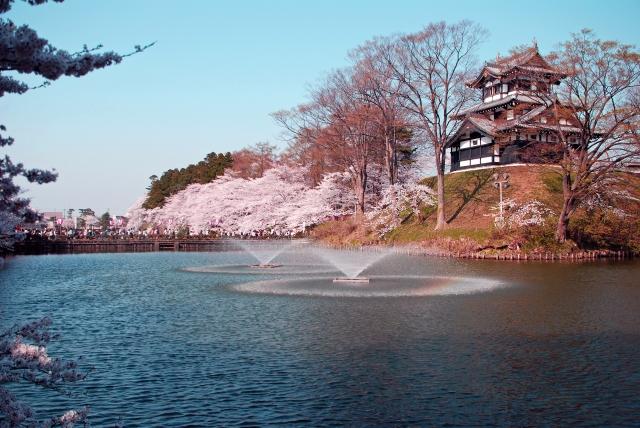 高田公園 桜 見ごろ