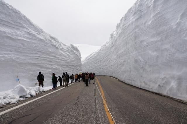 立山黒部アルペンルート 雪の大谷 時期