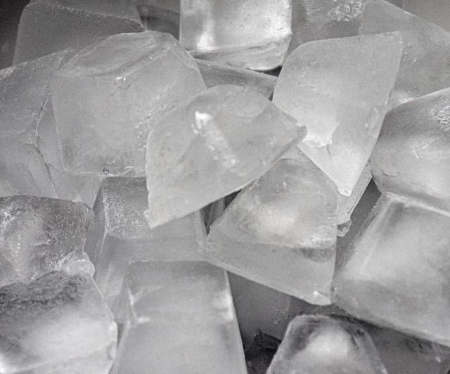 製氷機 フィルター カビ